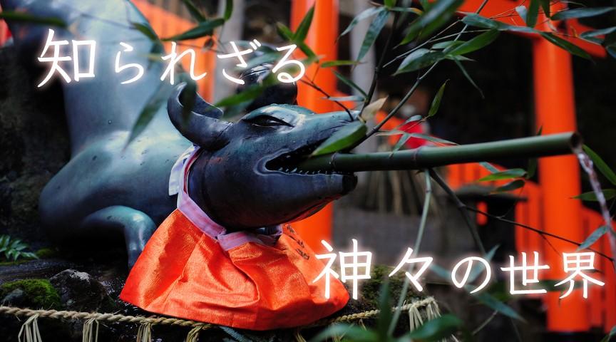 【京都・稲荷山】龍が舞い、狐が走る!稲荷山山頂で願いを叶えるお山ツアー