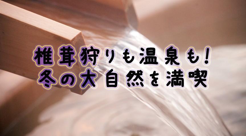 【大阪府高槻市】焼き芋にボカシ肥づくり!椎茸狩りから温泉まで!大満足ツアー