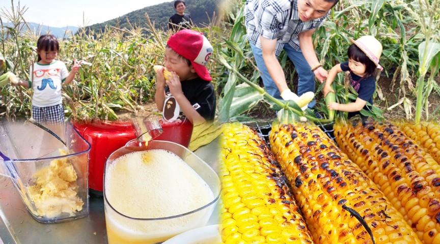 """農園でしか味わえない""""生トウモロコシ""""を丸かじり。富士山を背にトウモロコシのフルコース"""