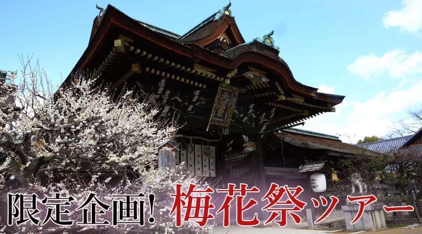 【京都・北野天満宮】年1度の限定企画!梅花祭で賑わう北野天満宮へ!