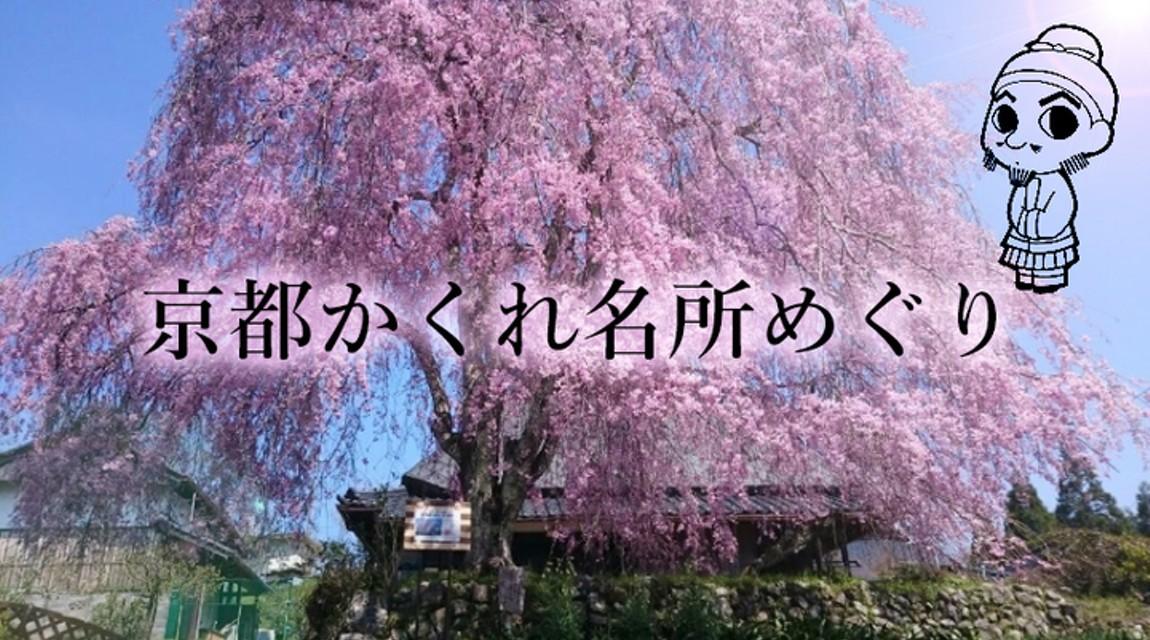【京都・春限定ツアー】右京のさくら名所めぐり!京北・西の鯖街道の桜をめでる満喫の1日間♪