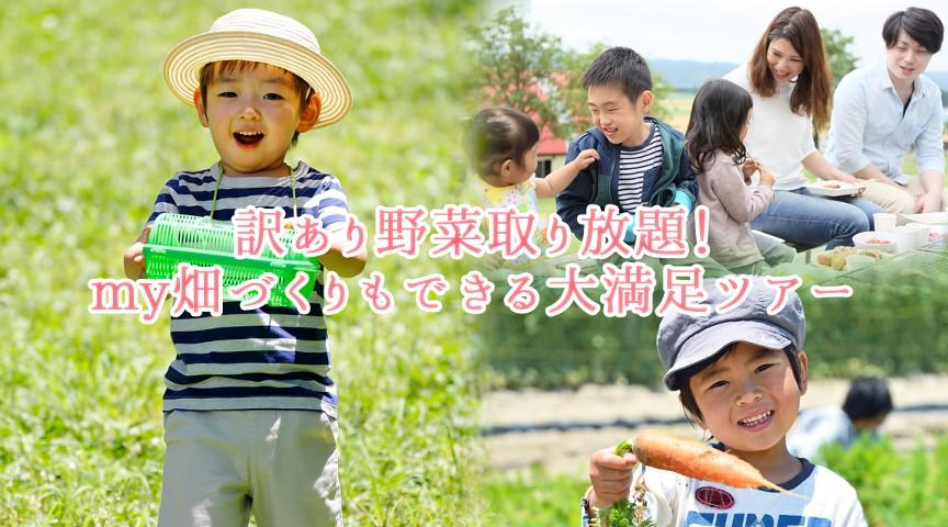 【神奈川・横浜】訳あり野菜取り放題から幼虫捕獲まで!BBQもピザもmy畑もつくれる農園ツアー