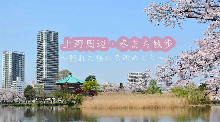 【春まち散歩・上野編】隠れた桜の名所をめぐる!~可憐に咲く街角の桜をめでる街歩き~