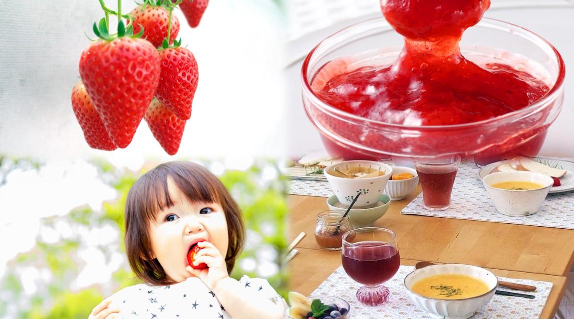 【千葉】真っ赤な春のいちごでジャム教室!おしゃれ古民家で、採れたて野菜のクッキング♪