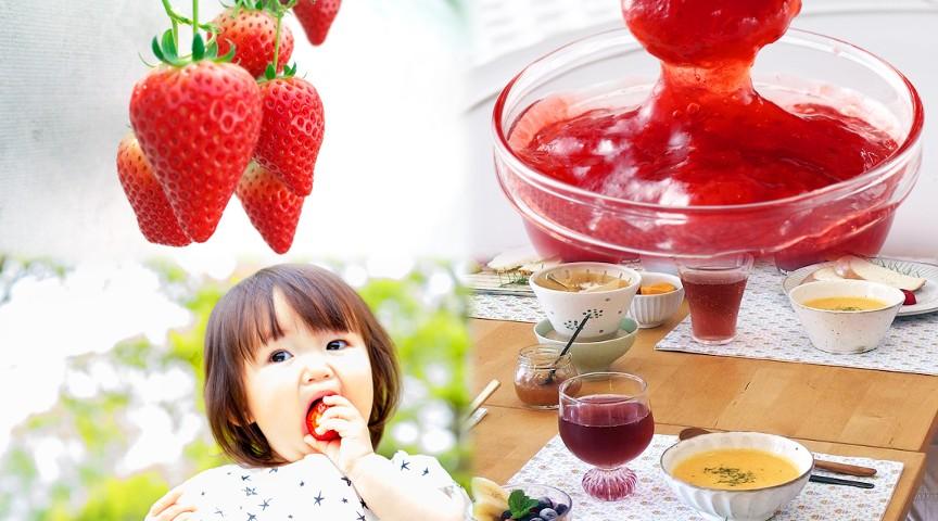 【千葉】真っ赤な春のいちごでジャム作り!おしゃれ古民家で、採れたて野菜のクッキング♪