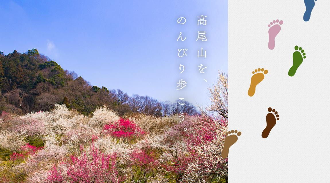 【高尾山】世界の山を知る登山家と高尾山をのんびり歩こう~山麓で見つける自然の魅力~