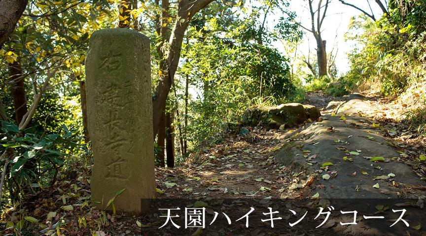 【上郷・森の家】コース③鎌倉の歴史に詳しい日本刀職人といく!考古ロマンに浸りながら尾根の道を歩こう!<街歩き>