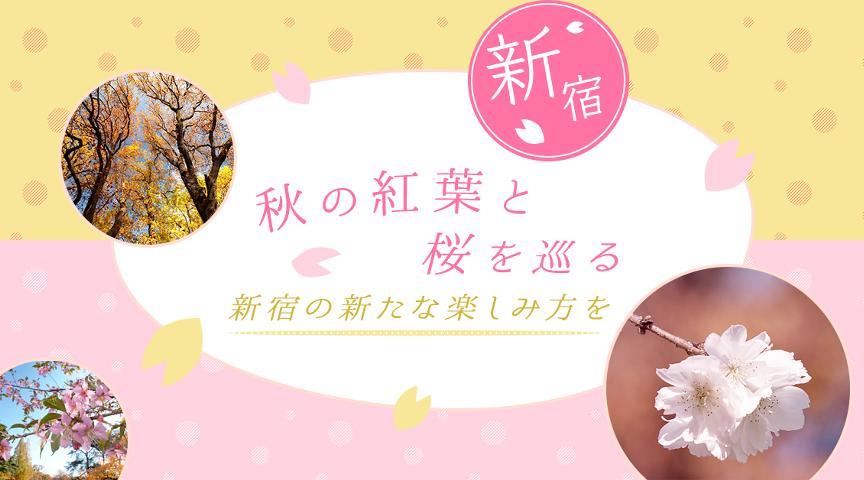 【新宿】新宿の歴史を探る~桜ガイドが教える新宿の歴史の楽しみ方~