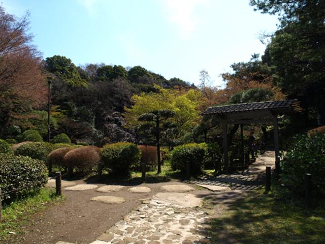 椿山荘の横を抜けて、新江戸川公園の庭園の自然に触れましょう