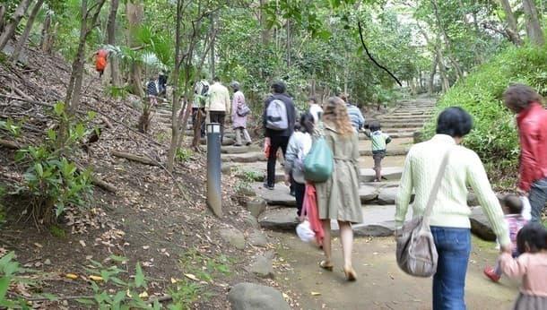 【街パス】文の京・街なかを親子でのんびり散歩しながらママ友を作ろう「神田川・目白台編」