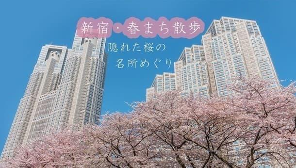 【春まち散歩・新宿編】隠れた桜の名所をめぐる!~可憐に咲く街角の桜をめでる街歩き~