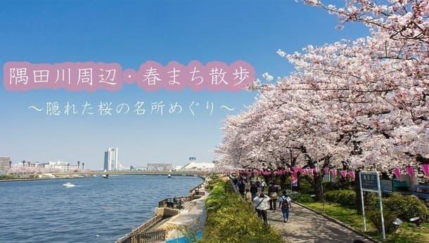 【春まち散歩・隅田川編】隠れた桜の名所をめぐる!~可憐に咲く街角の桜をめでる街歩き~