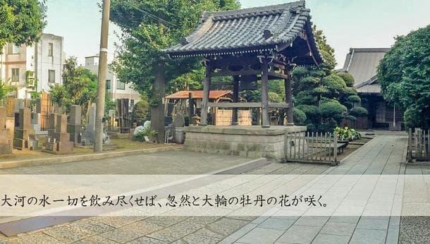 【東京・渋谷で坐禅体験】坐禅・食などの作法を通して禅の感謝のこころを学ぼう!