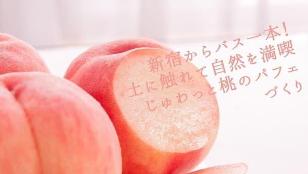 【山梨・笛吹】みずみずしい果物をたっぷり詰め込んで!農業体験もできるランチ&パフェづくり