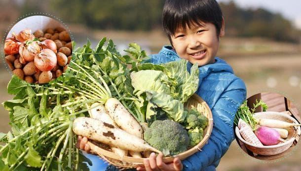 【自然農園abiofarm】空気の爽やかな農場で、種とりから始める植付け体験&BBQ@相模原