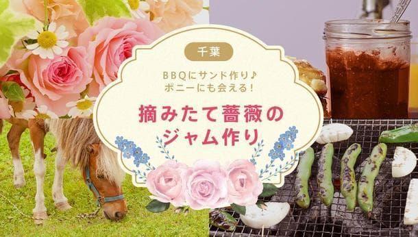 【千葉県 館山市】食べることができる美しい花!薔薇のジャムづくり