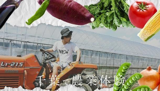 【千葉】トラクター乗車体験☆専用の畑で野菜を育て、食べられる!