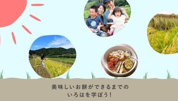 【もち米の収穫体験!】美味しいお餅ができるまでのいろはを学ぼう!