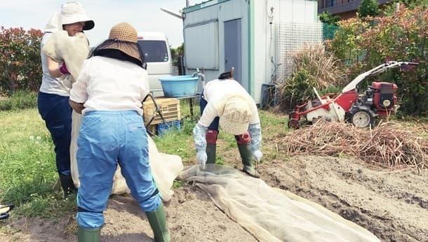 町の中で一人で切り盛りする農園へようこそ。農業体験と本格窯でピザ