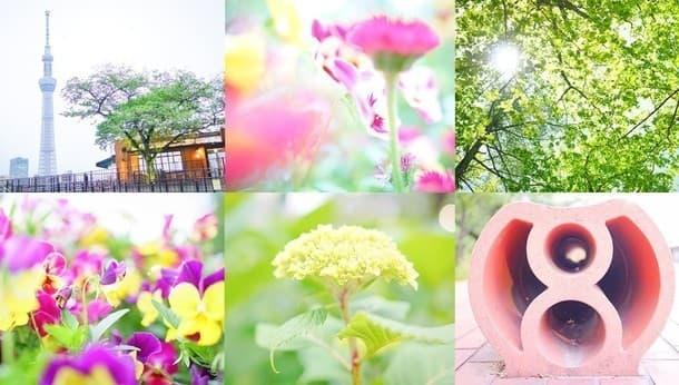 カメラで切り取る東京の日常。プロカメラマンがレクチャーする「脱オート撮影ツアー」