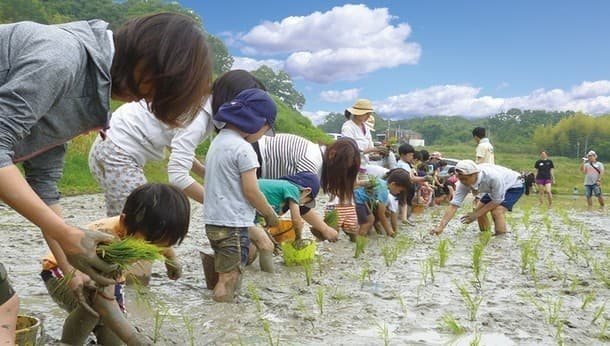 田植えしてみませんか? 時間をかけて再生した水田でオーガニックな一日農業体験。