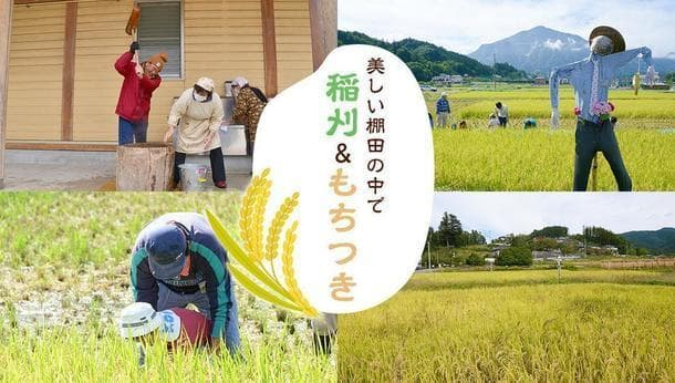 【棚田で稲刈り】絶景!美しい棚田で稲刈り&もちつき体験
