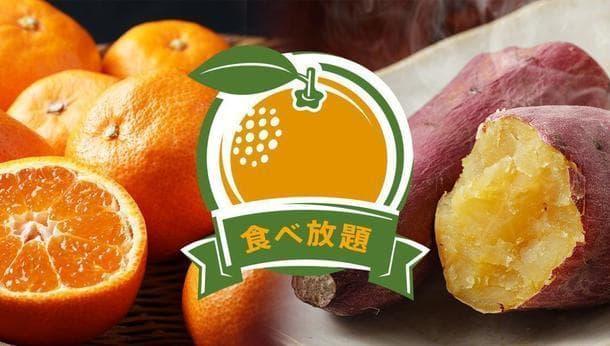 【神奈川県】絶好のロケーションでみかん食べ放題!!