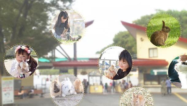 【横浜・青葉】春のこどもの国で、うさぎとふれあいツアー!〜抱っこでうさぎと仲良くなろう!〜