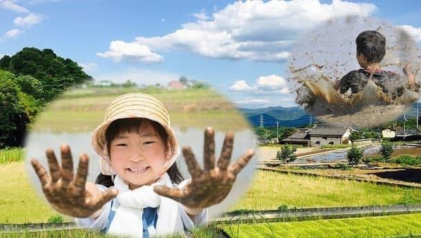 旬の野菜収穫と田んぼでの泥んこ遊び、絵に描いたような日本の田舎体験。
