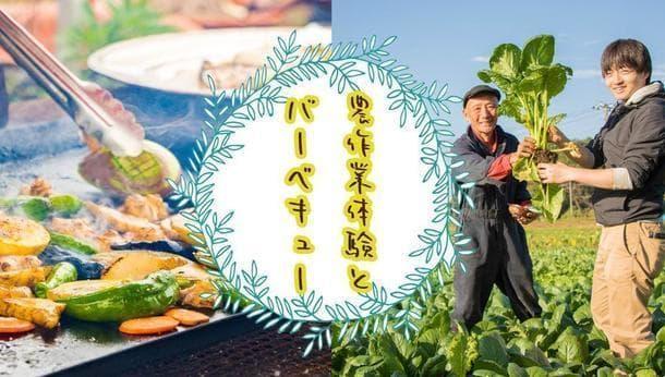 【千葉県】野菜の旨みを存分に味わえる完全無農薬栽培!農作作業体験と野菜BBQ