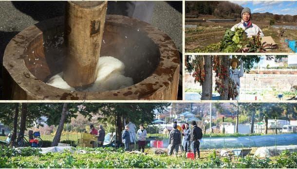 【自然あふれる愛川町】元シェフと彩る!自然のなかでワイワイ楽しむ収穫&餅つき体験!