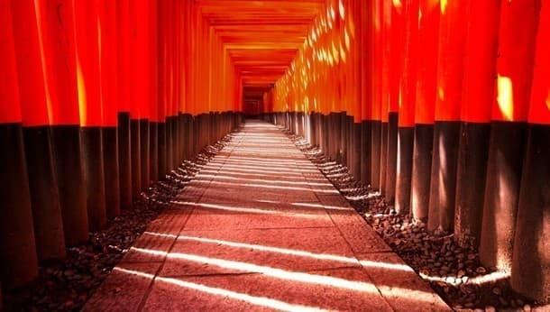 神社プロガイドが伏見稲荷の秘密を探る旅へご案内!