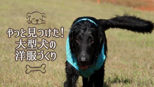 【東京都荒川区】大型犬の洋服がつくれる!オートクチュール出身デザイナーとの激レア体験