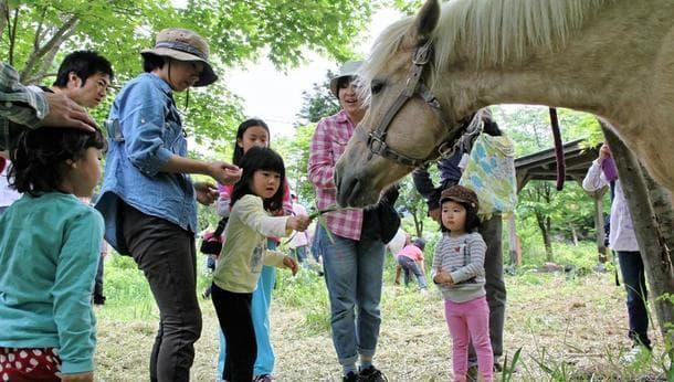 ホースセラピー仕事体験 〜馬に癒されながら、馬の力を体感〜