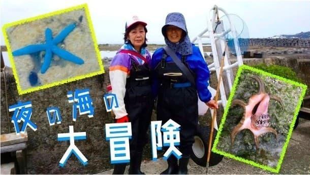 【徳之島】びっくりがいっぱい!島のおかあさんたちと歩く 夜の海の大冒険